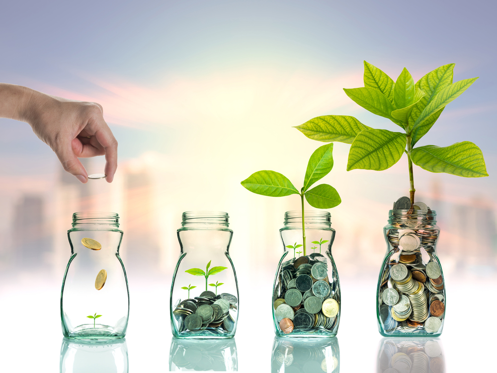 growth-investment